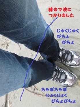 011_20120516191425.jpg