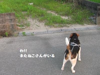 020_20120530193430.jpg