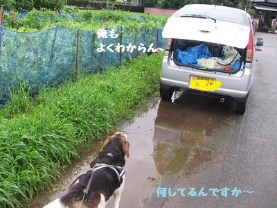 038_20120701064452.jpg