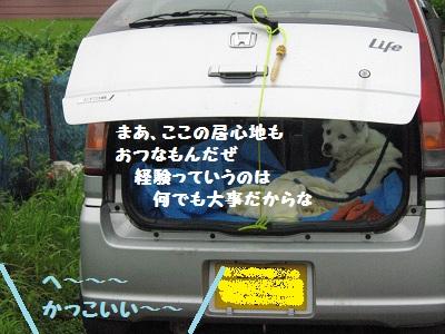 039_20120630212355.jpg