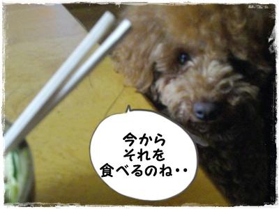 4kiro3.jpg