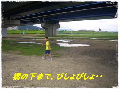 aima8.jpg