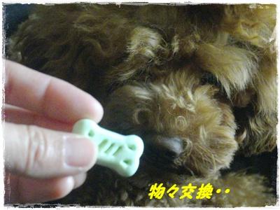 cyoushi1.jpg