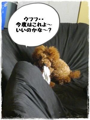 cyoushi3.jpg
