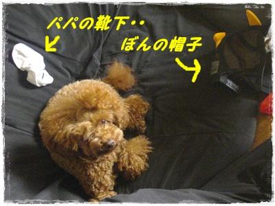 cyoushi4.jpg