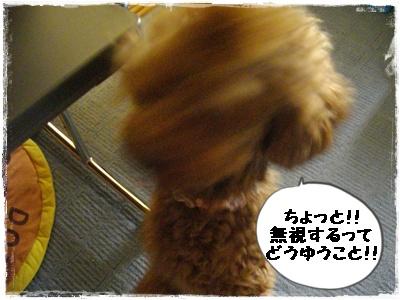 cyoushi5.jpg