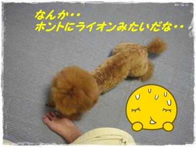 kiroku4.jpg
