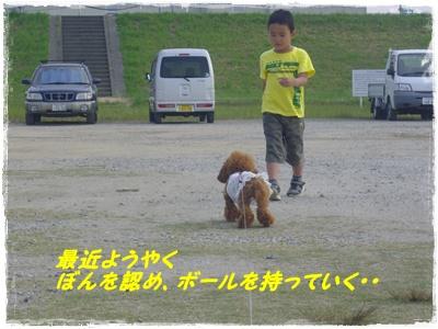 lanchi2.jpg