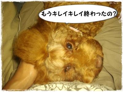mejirushi4.jpg