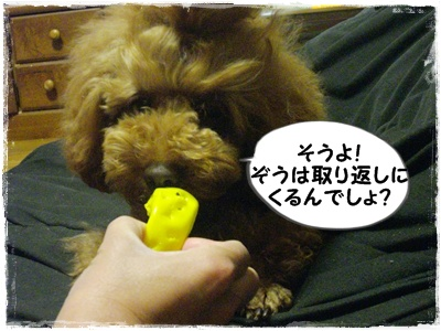michizure8.jpg