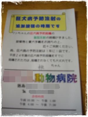 shinsatsu11.jpg