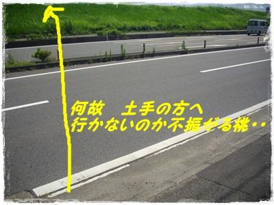shinsatsu2.jpg
