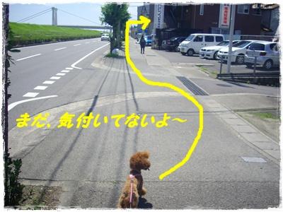 shinsatsu3.jpg