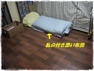 taidou6.jpg