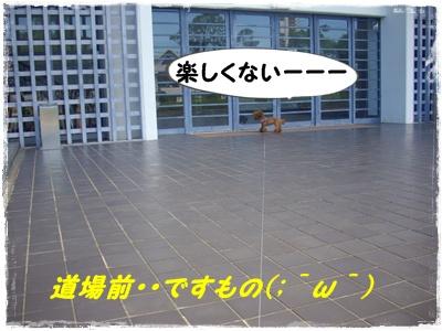 yakyu9.jpg