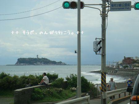 DSC09805-1.jpg