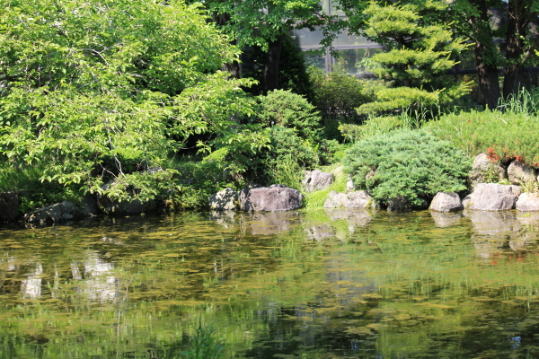 豊平公園6