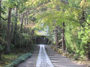 寿福寺参道