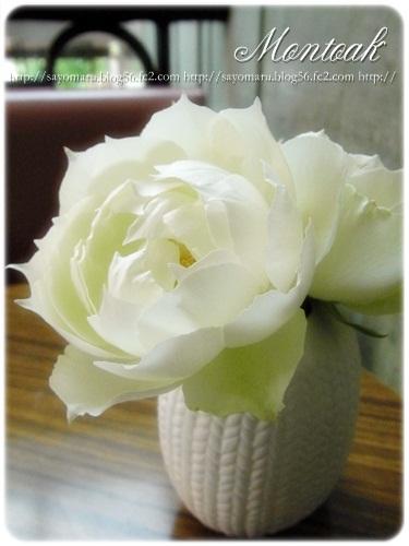 sayomaru4-343_20121019014724.jpg