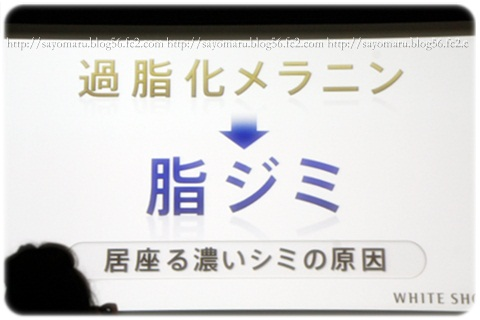 sayomaru4-582.jpg