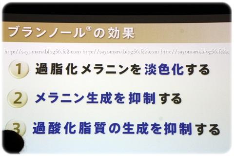 sayomaru4-587.jpg