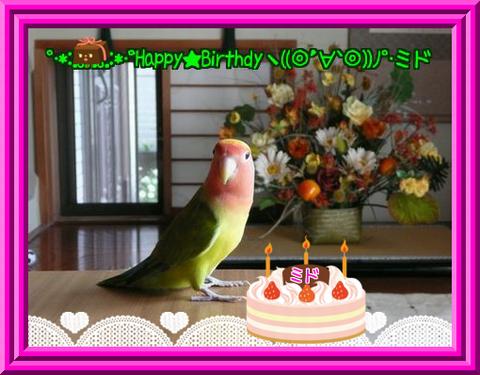 ミド誕生日
