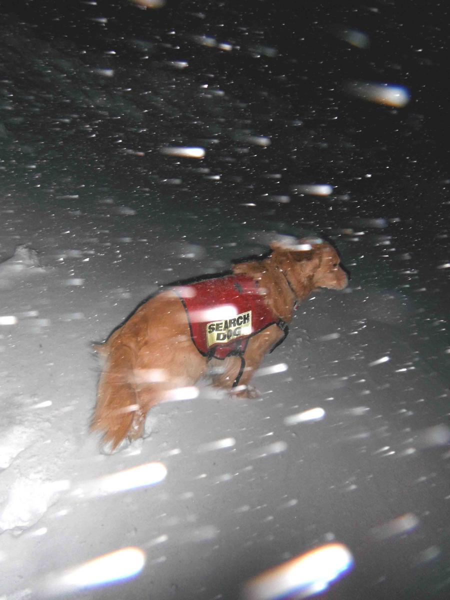 吹雪く夜(2)
