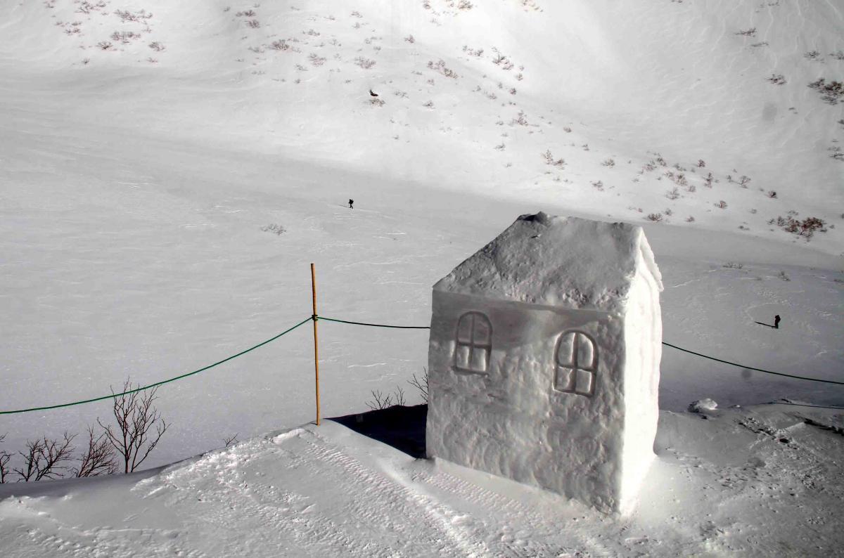 2013 全国雪崩 2月09日(16)