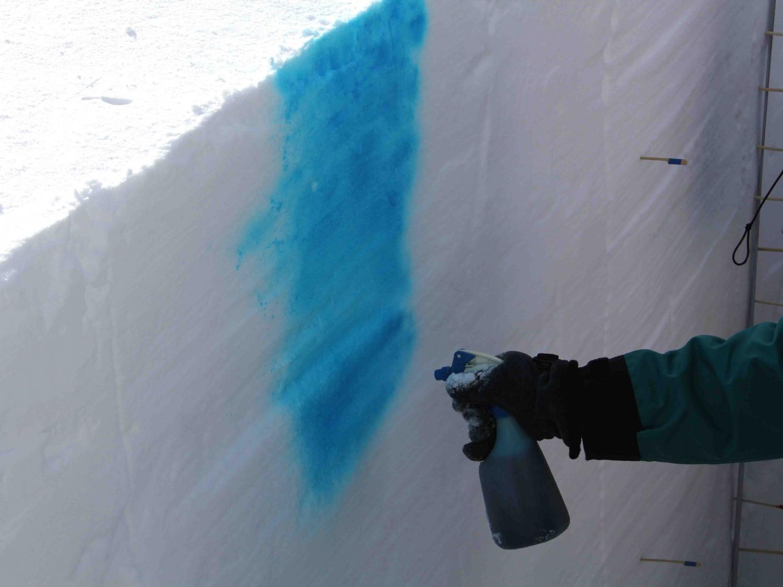2013 全国雪崩 2月09日(31)