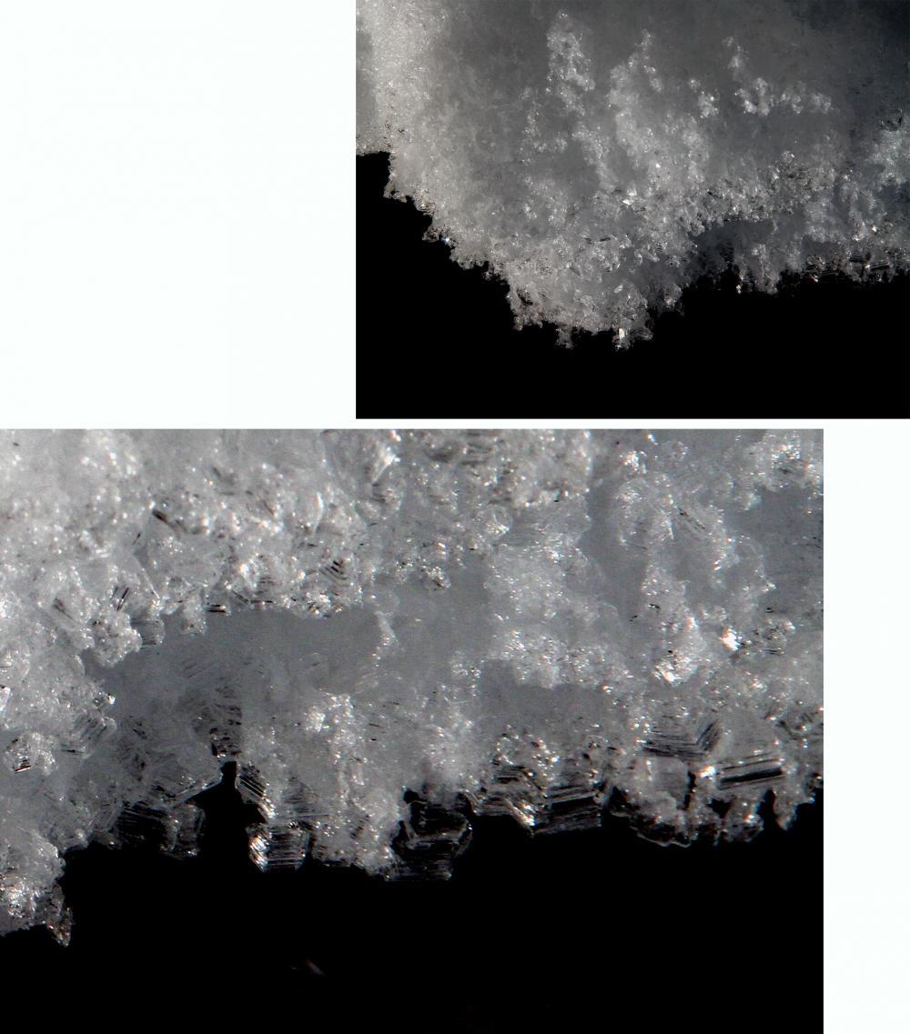 2013 全国雪崩 2月10日 霜ざらめ雪(2)