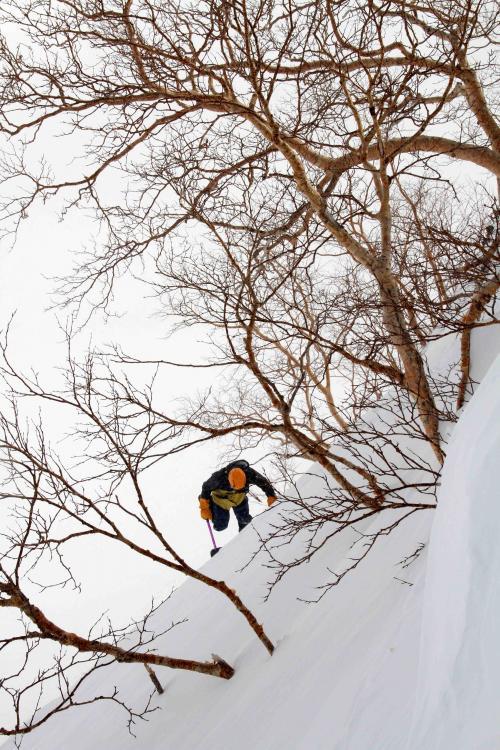2013 全国雪崩 2月09日(52)