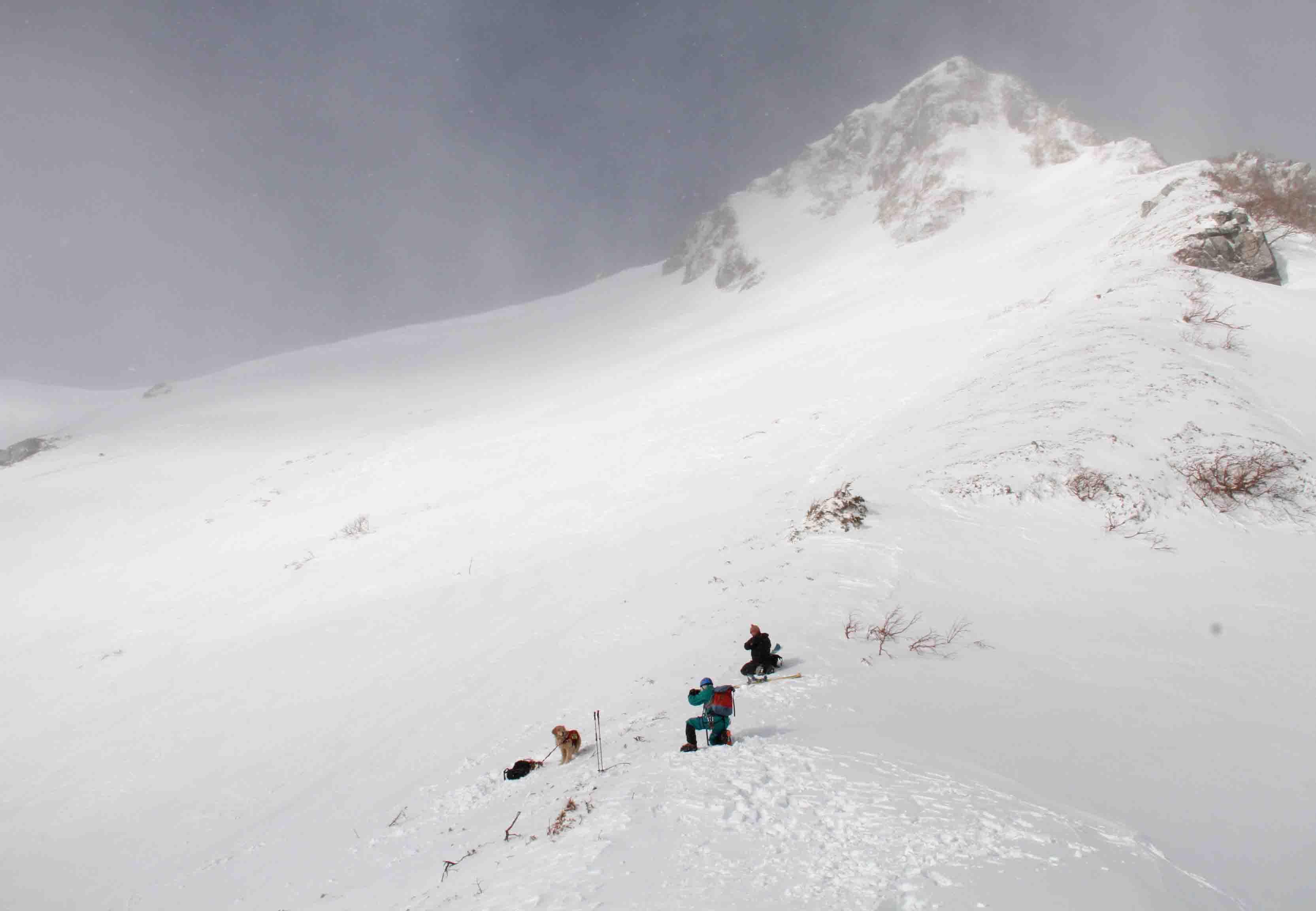 2013 全国雪崩 2月09日(55)