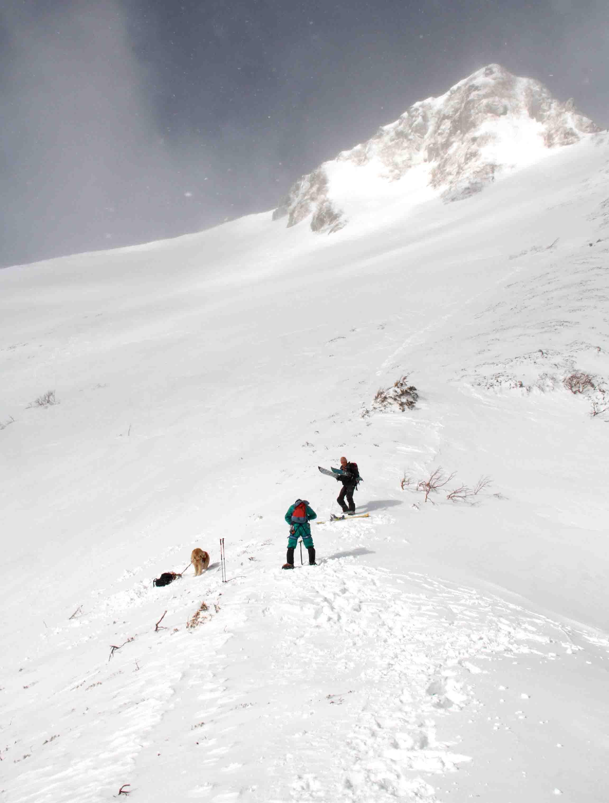 2013 全国雪崩 2月09日(56)