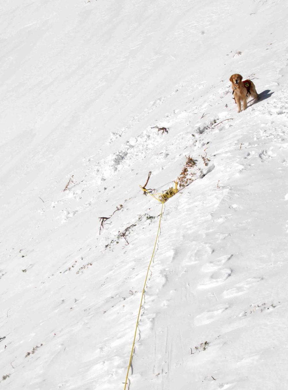 2013 全国雪崩 2月09日(61)