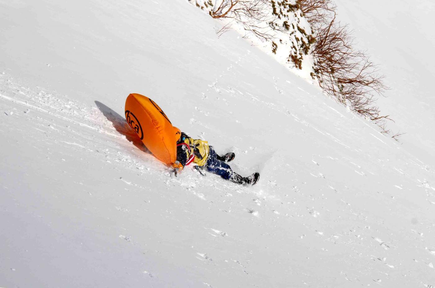 2013 全国雪崩 2月09日(79)