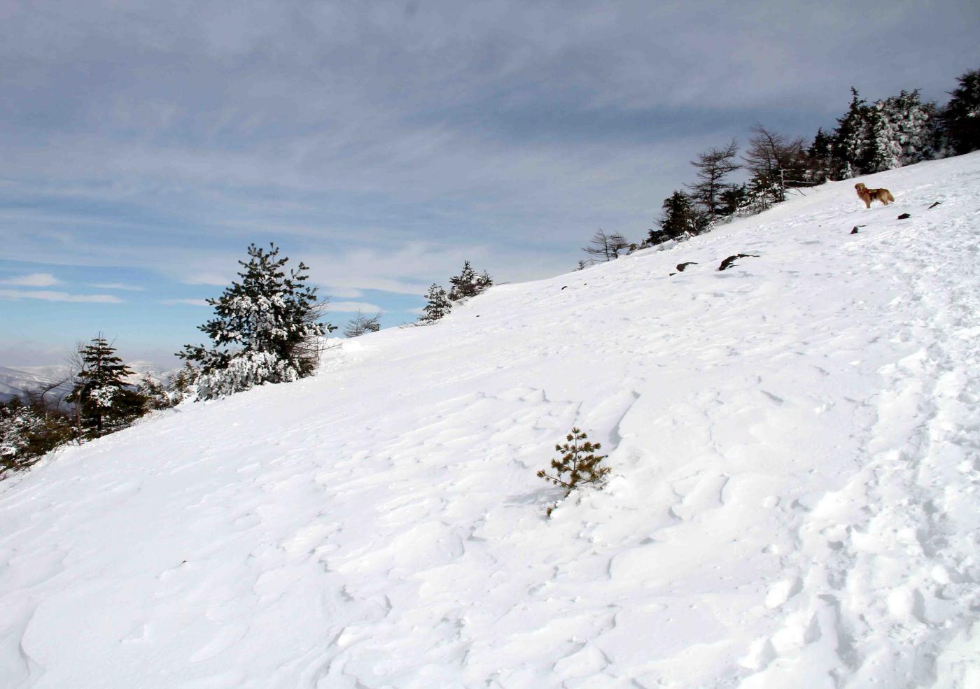 黒斑山へ(14)
