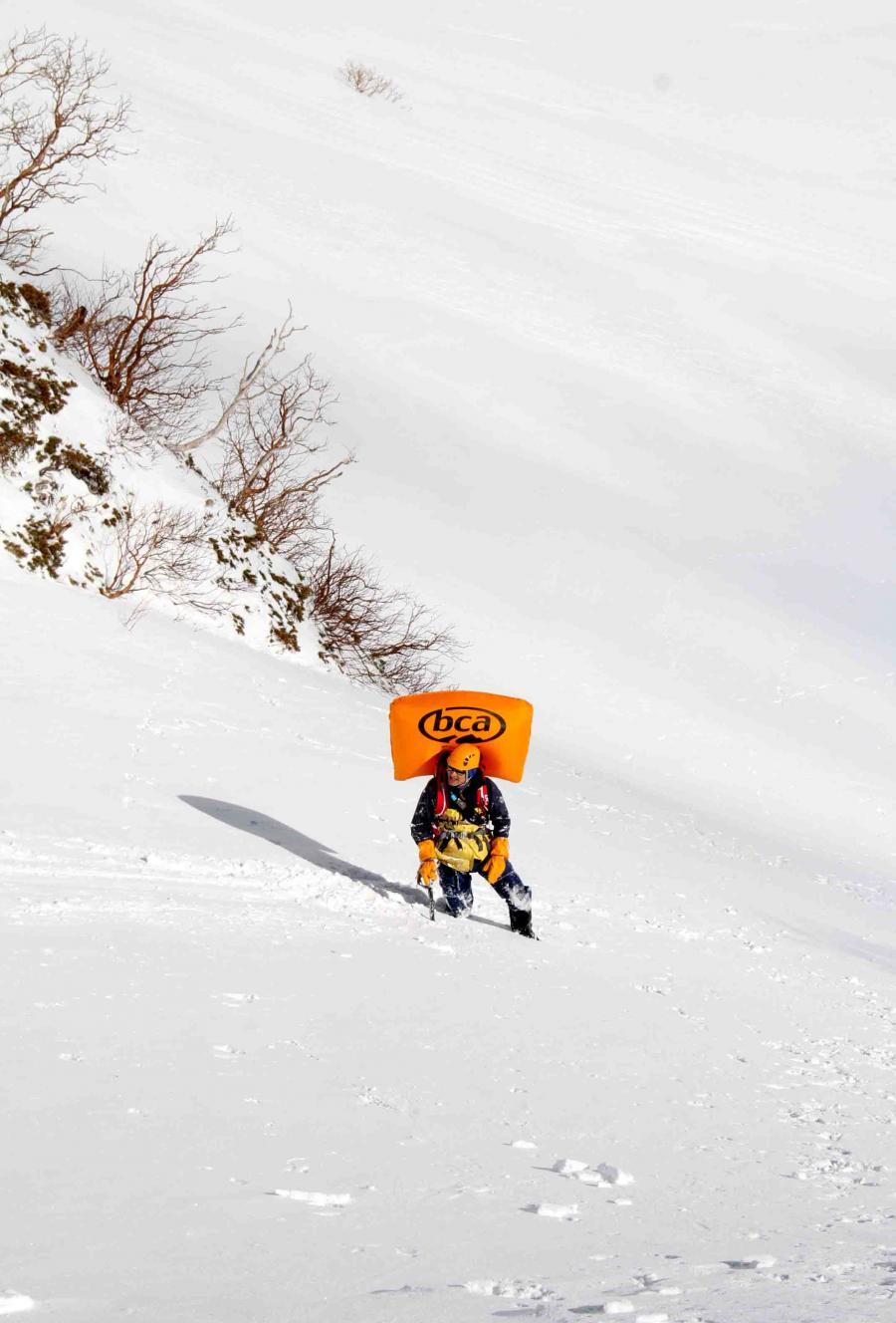 2013 全国雪崩 2月09日(82)