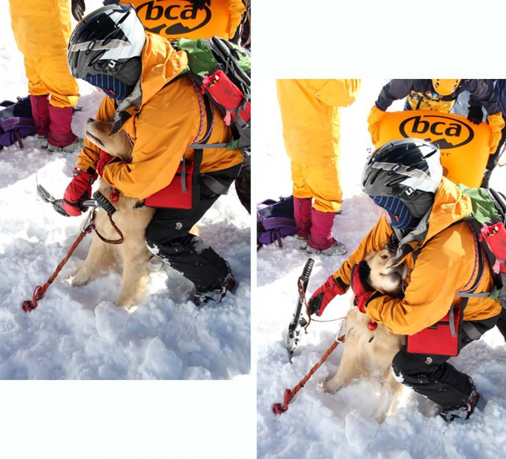 2013 全国雪崩 2月09日(90)