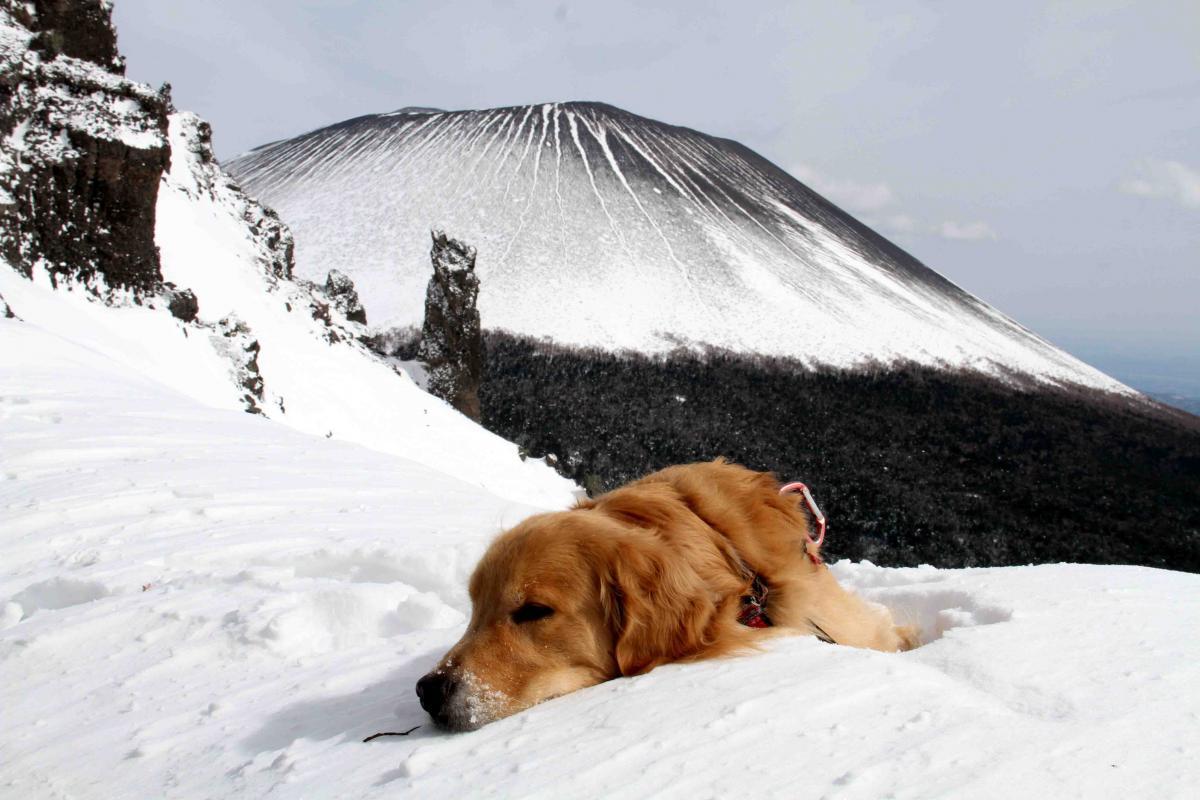 黒斑山へ(33)