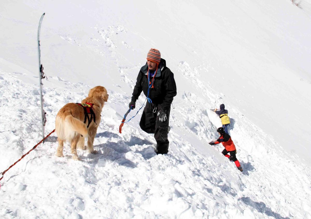 2013 全国雪崩 2月10日(111)