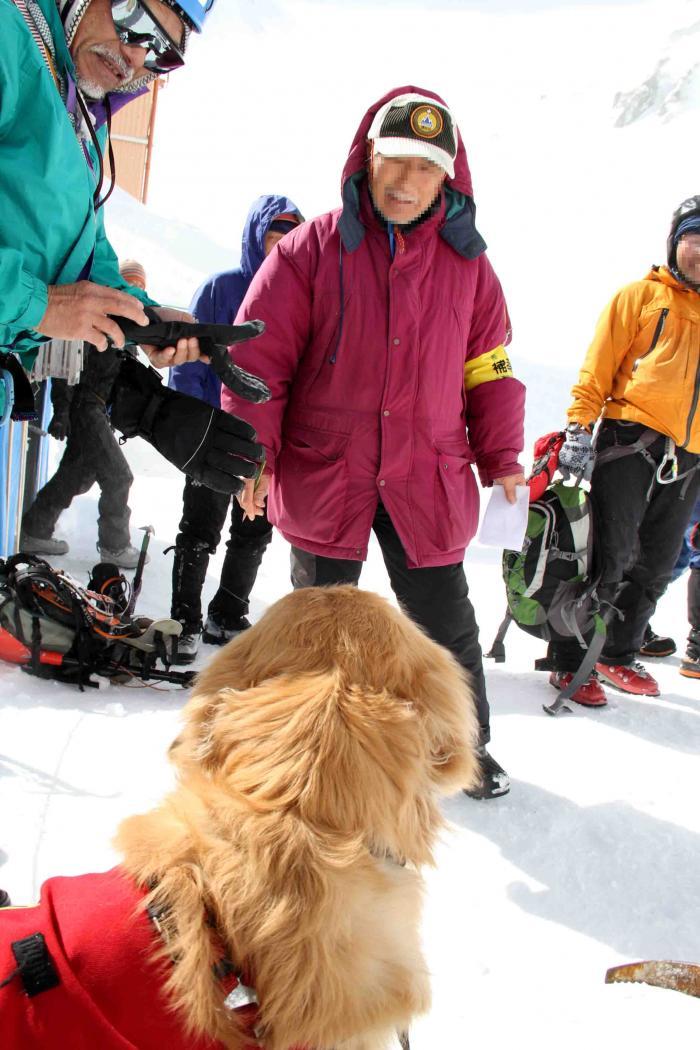 2013 全国雪崩 2月10日(118)