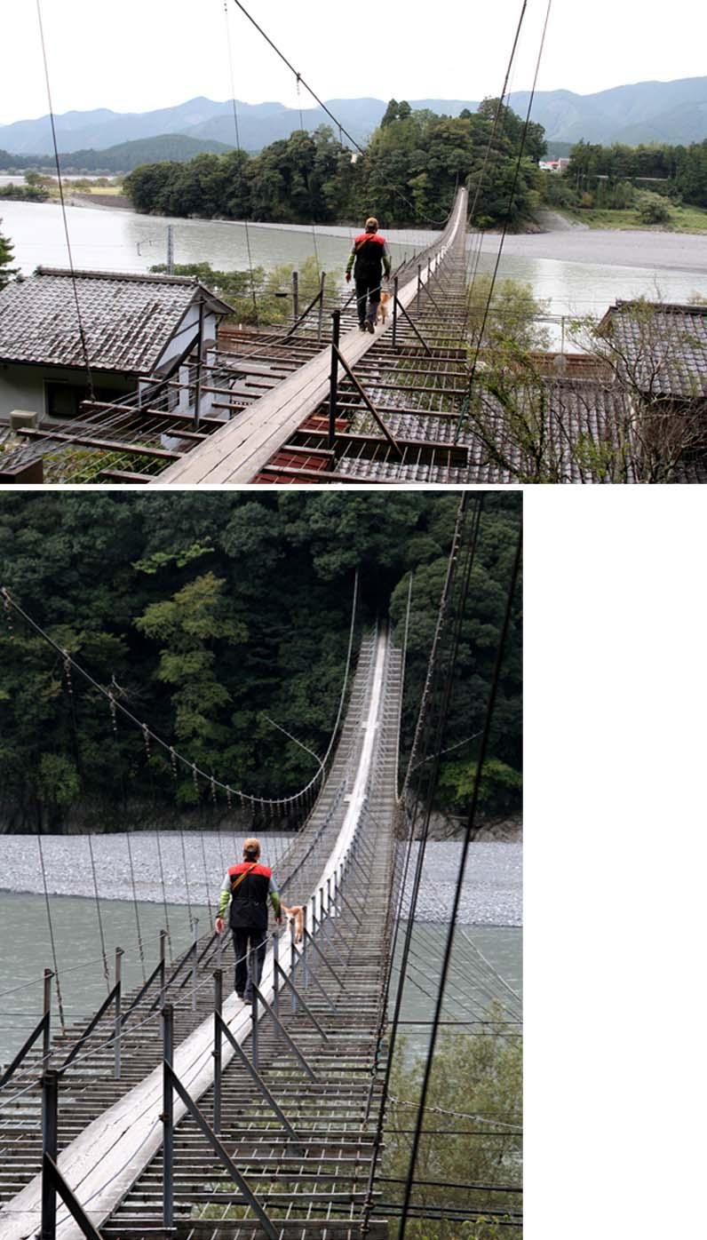 塩郷の吊り橋(4)
