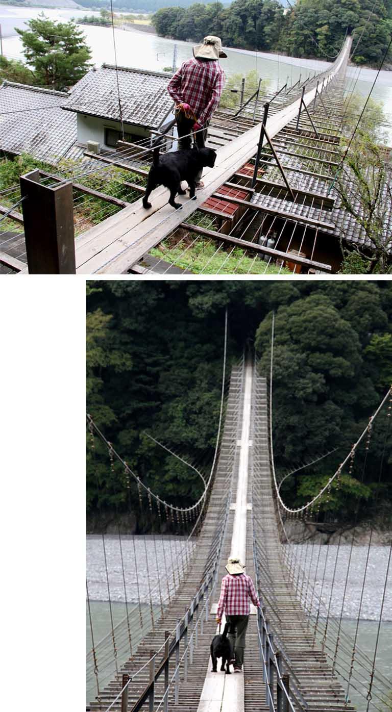 塩郷の吊り橋(6)
