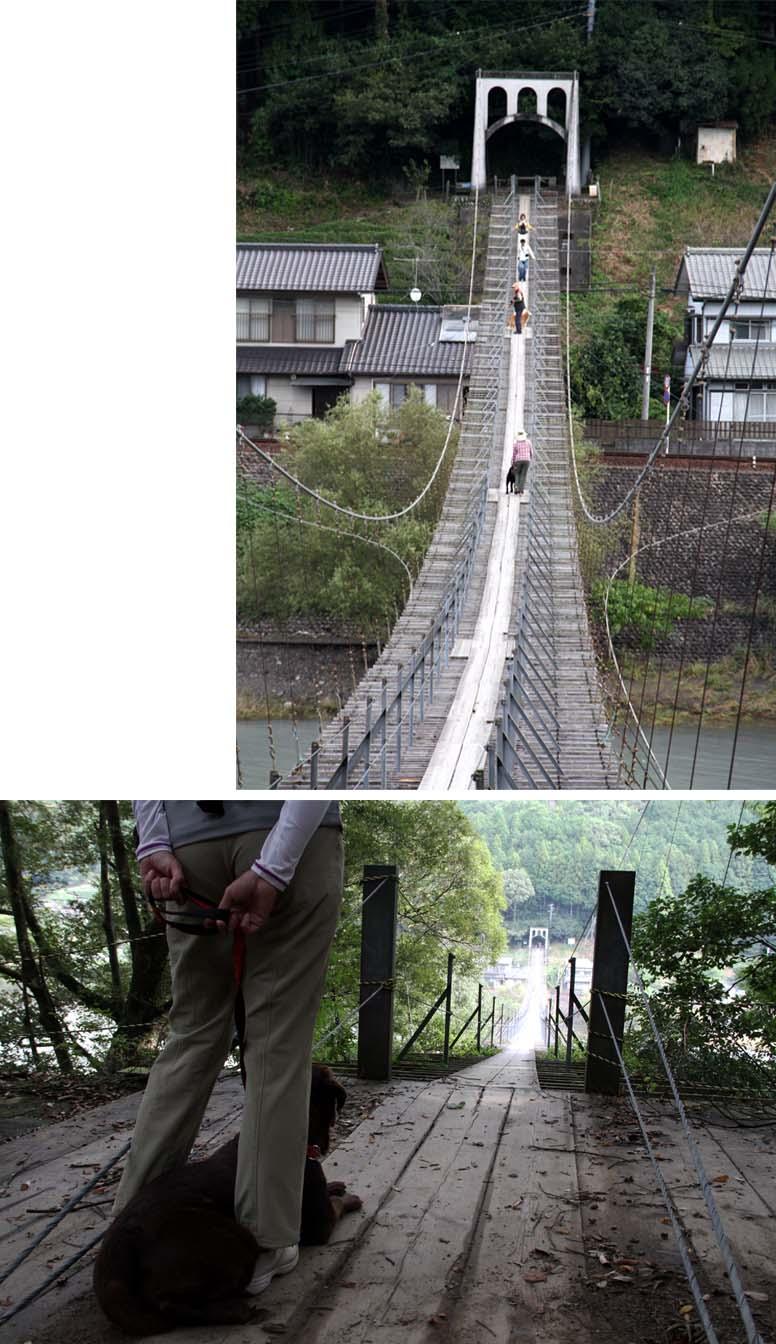 塩郷の吊り橋(15)