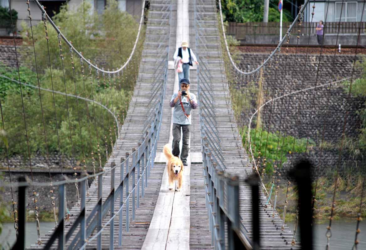 塩郷の吊り橋(25)