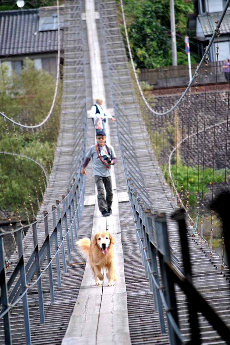 塩郷の吊り橋(26)