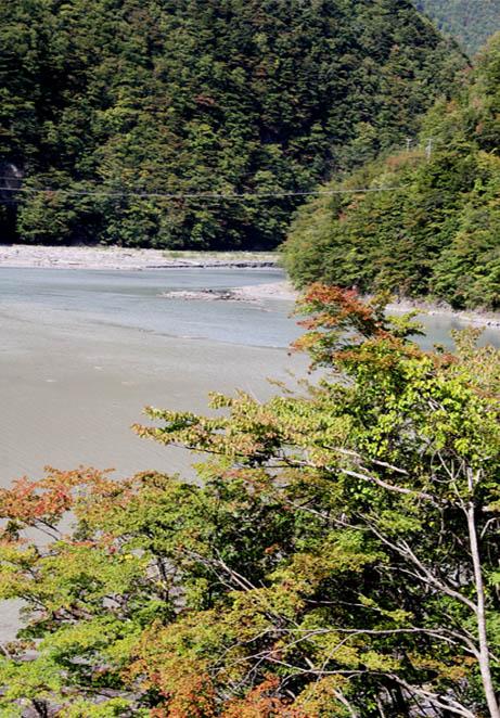畑薙大吊橋(5)