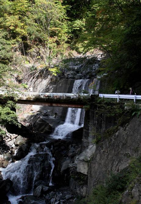 畑薙大吊橋(6)
