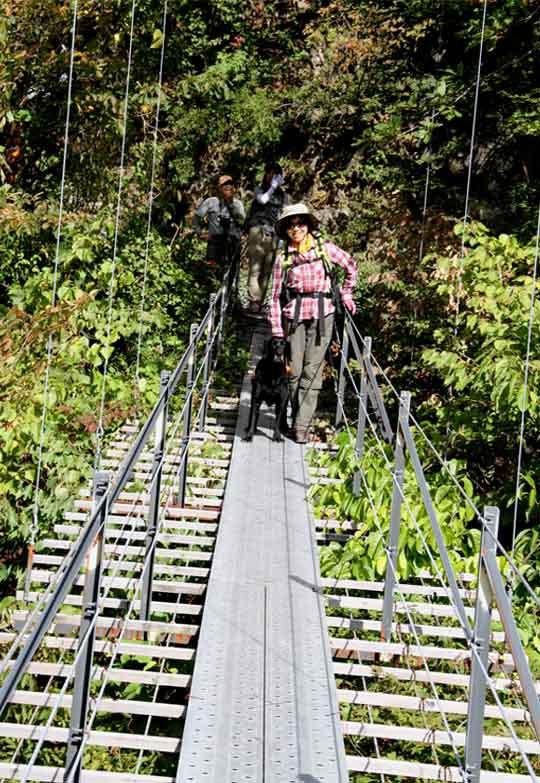 畑薙大吊橋(8)
