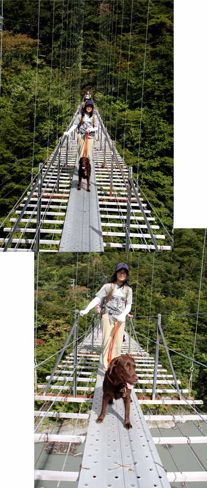 畑薙大吊橋(11)